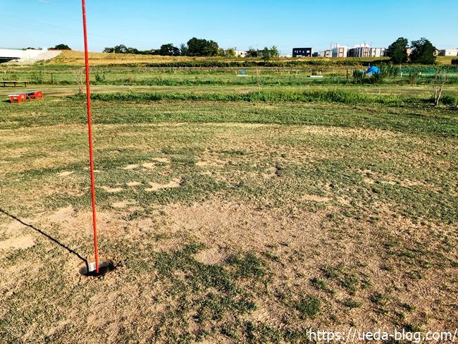 豊水パークゴルフ場は芝の状態が悪い