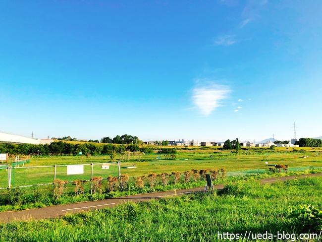 豊水パークゴルフ場(豊水大橋上流左岸)の総評