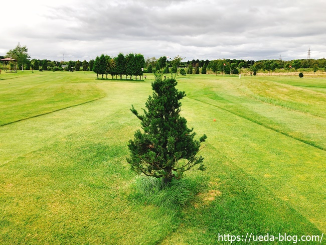 るるまっぷパークゴルフ場のコースど真ん中に剃り立つツリーハザード