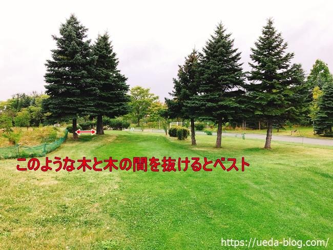 木が多くショートカットできるかがカギ