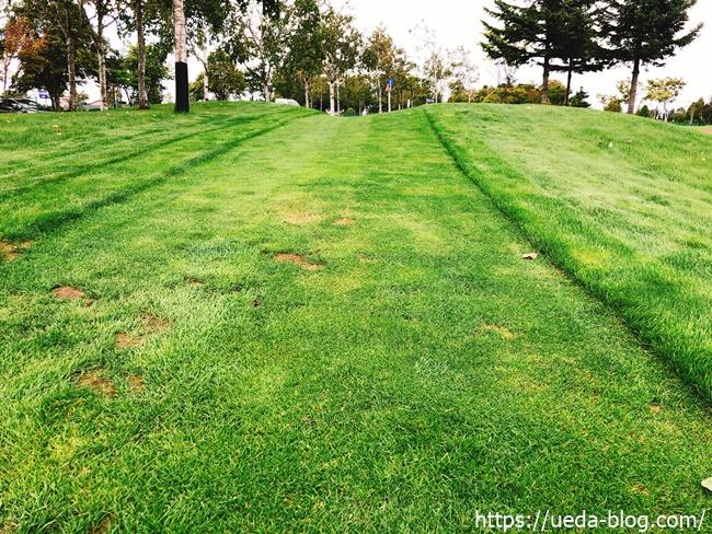 傷んだ芝生の箇所も