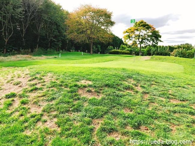グリーン奥の芝