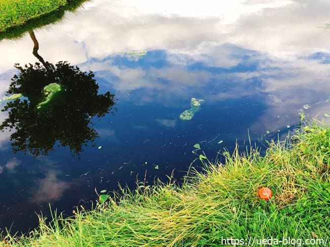 グリーン奥のウォーターハザード 池
