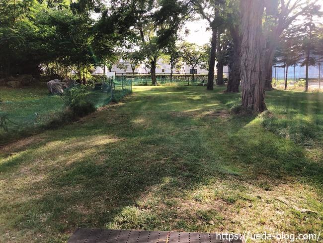 太平公園パークゴルフ場は木々に囲われている