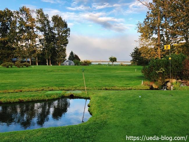 グリーン横の池