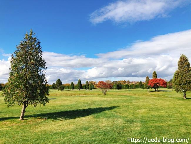 リバーサイドパークゴルフ場はフラットで平坦な初心者にも易しい