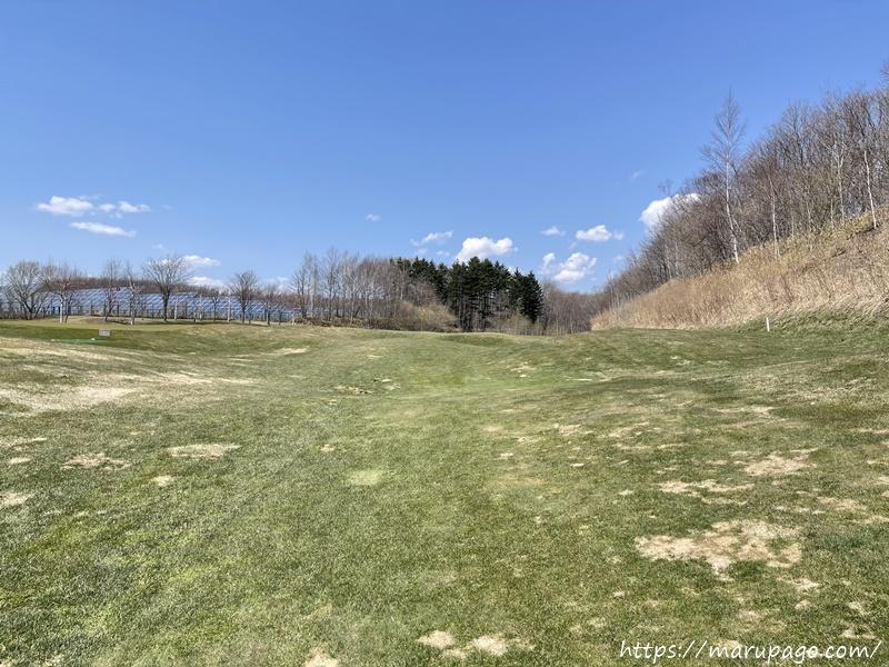 ローンスケープ輪厚 春の芝の状態